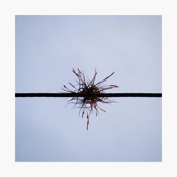 Easier, quicker, safer: ephemeral life Photographic Print