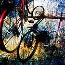 bicycle by Shannon Holm