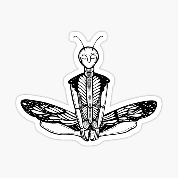 Butterfly Pose / Baddha Konasana Sticker