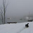 Winter Romp by Nina Toulmin