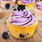Blueberry muffin cat by Cats In Food