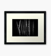 Thorns Framed Print