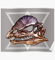 Dilophosaurus - Dinosaur Skulls Poster