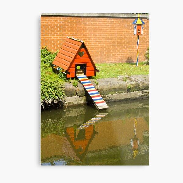 Duck House Metal Print
