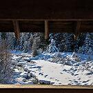 framed snow by Perggals© - Stacey Turner