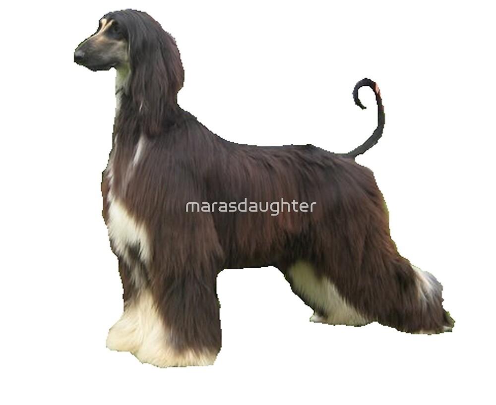 afghan hound full by marasdaughter