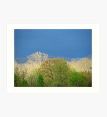 ~Pastels Of Spring Light~ Art Print