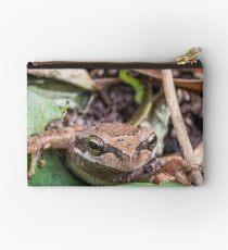 Eastern Common Froglet Studio Pouch