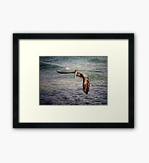 Pelican gets tricked.. Framed Print