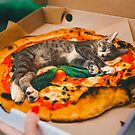 Pizza Cat by Cats In Food