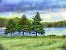 Pine Tree Lake - Digital Photograph Painting  by LjMaxx