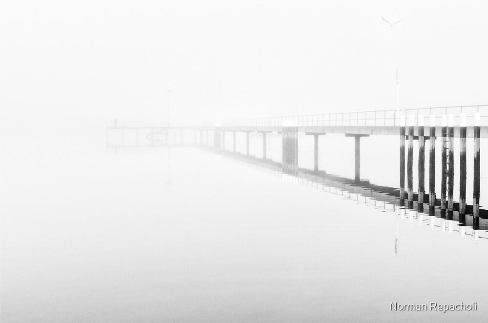 The Lone Fisherman by Norman Repacholi