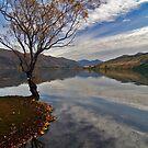 Lake Side by zoopita