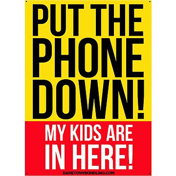 PUT THE PHONE DOWN, MY KIDS ARE IN HERE - SAFETY STICKER by dtkindling