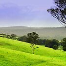 Valley of a thousand Hills by cjcphotography