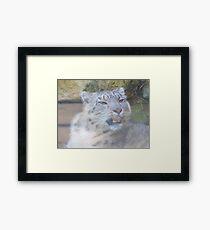 Snow Leopard Portrait (Photo Cezanne Style) Framed Print