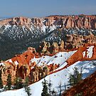 Bryce Canyon with Snow by Barbara Burkhardt