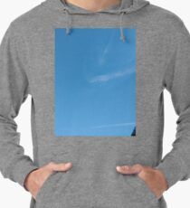 Building, Skyscraper, New York, Manhattan, Street, Pedestrians, Cars, Towers Lightweight Hoodie