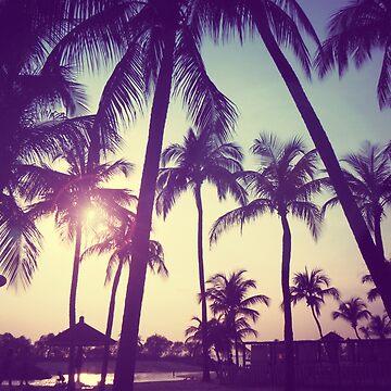 Palm Tree Sunset by WeirdPlanet101