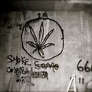 Graffiti by JamieLA