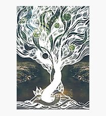 Lacuna Tree II Photographic Print