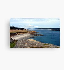 Cattle Point One Canvas Print