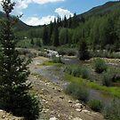 St Elmo, Colorado 01 by janetmarston