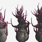 The Three Uglies by dmark3