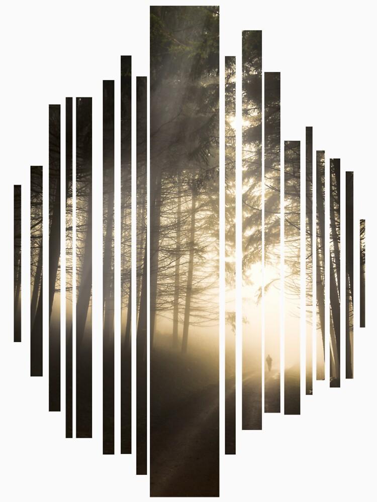 «Perdu dans la Brume» par patricemestari