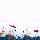 Poppies at Lake Geneva.....Switzerland by Imi Koetz