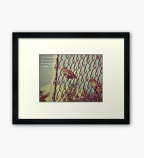 ...more than many sparrows. Framed Print