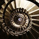 Ammonite Stairs by Paul O'Neill