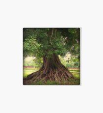 Roots 1/3 Art Board