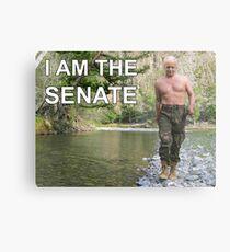 I am the senate Metal Print