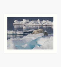 An Ice Rest Art Print