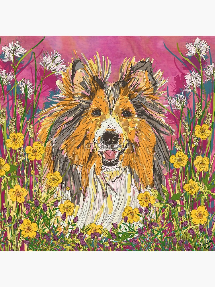 Sheltie by lottibrown