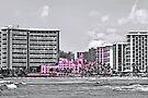 Pink Palace by DJ Florek