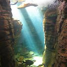 Sunlight Aqarium & Waterfall by hallucingenic