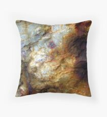 The Fox and the Duck Throw Pillow