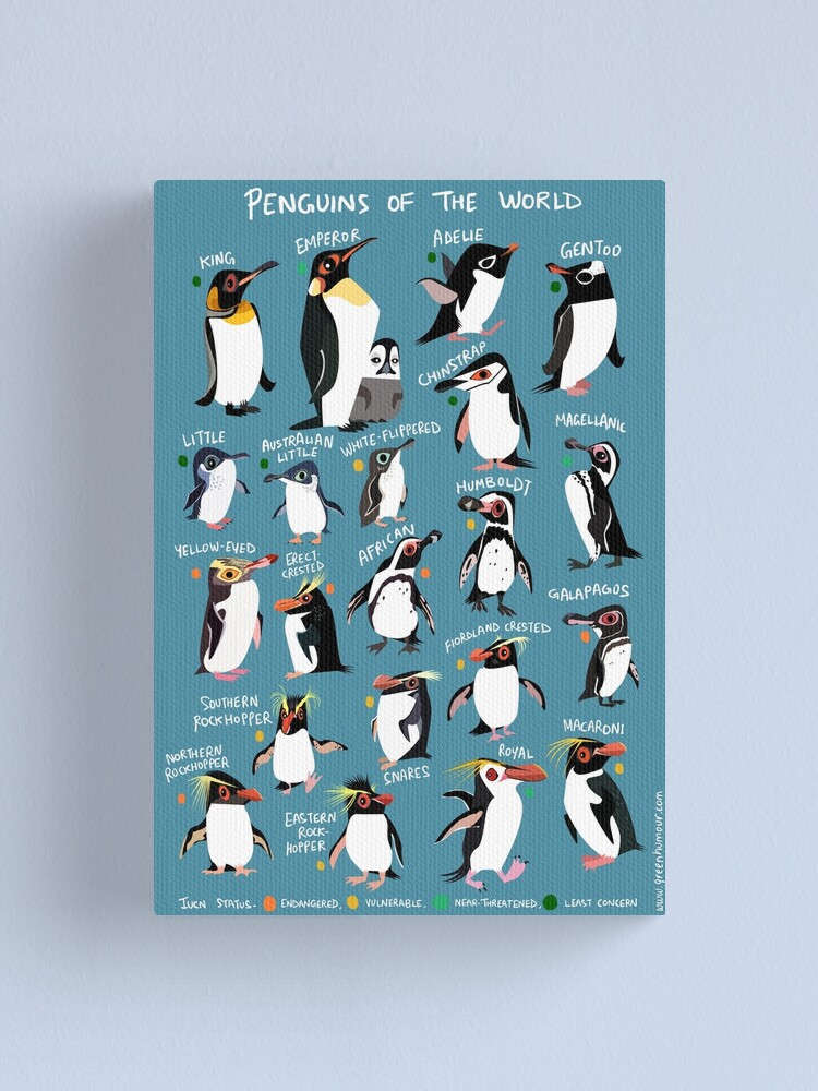 Alternate view of Penguins of the World Canvas Print