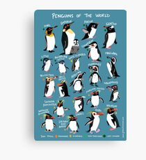 Penguins of the World Canvas Print