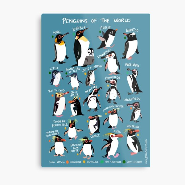 Penguins of the World Metal Print
