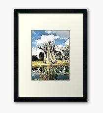 Dead Tree By Water Framed Print