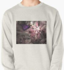 Beautiful Butterfly Pullover
