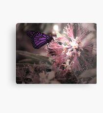 Beautiful Butterfly Metal Print