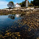 Lighthouse Park at Low Tide by toby snelgrove  IPA