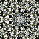 White Alyssum Flowers Abstract Mandala Kaleidoscope 1 by Artist4God