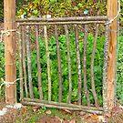 Poplar Tree Garden Gate by Vivian Eagleson