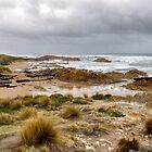 Stormy Skies at the Edge of the World, Tasmania by Christine Smith