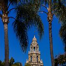 The Bell Tower Palms by Laddie Halupa